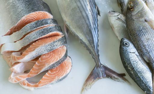 Snacks y golosinas para perros de pescado fresco (salmón y atún). Fresh fish (salmon and tuna fish) treats for dogs